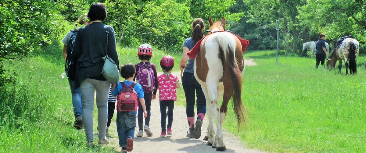 Voltigieren: Spiel & Spass mit Pferden